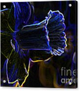 Neon Flowers Acrylic Print