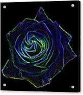Neon Rose 5 Acrylic Print