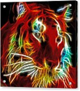 Neon Tiger Acrylic Print
