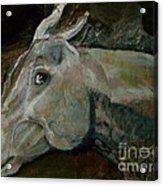 Nephrite's Horses On Stairs Acrylic Print