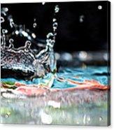 Neptune's Crown Acrylic Print
