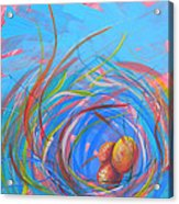 Nest Of Prosperity 11 Acrylic Print