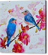 Nesting Pair Acrylic Print
