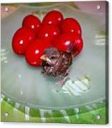 Nestling And Red Eggs Acrylic Print