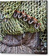 Nets And Knots Number Three Acrylic Print by Elena Nosyreva