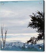 Nevada Blue Acrylic Print