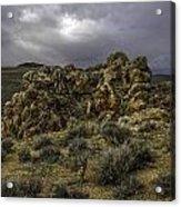 Nevada Desert Skies Acrylic Print