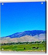 Nevada Range Acrylic Print