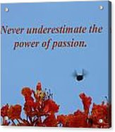 Never Underestimate The Power Of Passion Acrylic Print
