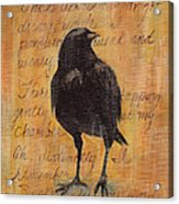 Nevermore I  Acrylic Print
