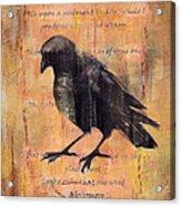 Nevermore II Acrylic Print
