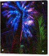New Age Tropical Palm Acrylic Print