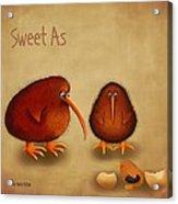 New Arrival. Kiwi Bird - Sweet As - Boy Acrylic Print