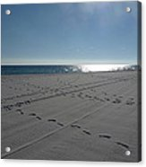 New Beach Acrylic Print