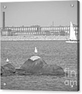 New Bedford Massachusetts Black White Acrylic Print