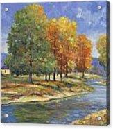 New England Autumn Acrylic Print by John Zaccheo