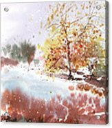 New England Landscape No.219 Acrylic Print by Sumiyo Toribe