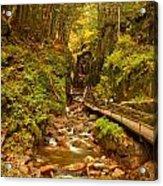 New England Waterfall Gorge Acrylic Print