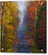New Hampshire Back Road Acrylic Print