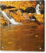 New Hampshire Stream Acrylic Print by Catherine Reusch Daley