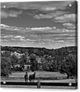 New Jersey Landscape With Horses Acrylic Print