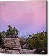 New Mexico Sunset With Cacti Acrylic Print