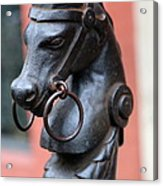 New Orleans Horse Tether Acrylic Print
