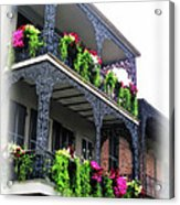 New Orleans Porches Acrylic Print