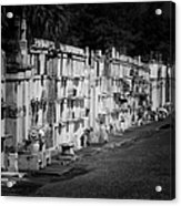 New Orleans St Louis Cemetery No 3 Acrylic Print