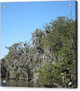 New Orleans - Swamp Boat Ride - 1212130 Acrylic Print