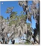 New Orleans - Swamp Boat Ride - 121239 Acrylic Print