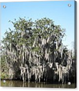 New Orleans - Swamp Boat Ride - 121244 Acrylic Print