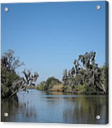 New Orleans - Swamp Boat Ride - 121245 Acrylic Print