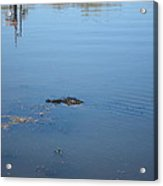 New Orleans - Swamp Boat Ride - 121285 Acrylic Print