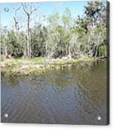 New Orleans - Swamp Boat Ride - 121291 Acrylic Print