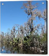 New Orleans - Swamp Boat Ride - 121295 Acrylic Print