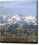 New Photographic Art Print For Sale Palm Springs Wind Farm Landscape Acrylic Print