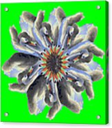 New Photographic Art Print For Sale Pop Art Swan Flower On Green Acrylic Print
