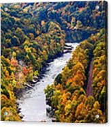 New River Gorge Acrylic Print
