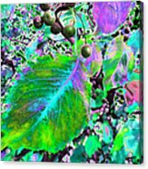 New Years Eve V7 Acrylic Print by Kenneth James