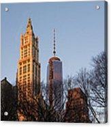 New York City Skyline Through The Trees Acrylic Print