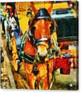New York Horse And Carriage Acrylic Print