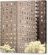 New York Public Housing Acrylic Print