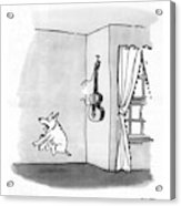 New Yorker May 8th, 1971 Acrylic Print