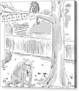 New Yorker October 26th, 1998 Acrylic Print