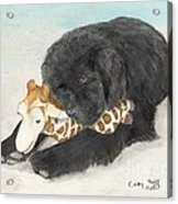 Newfoundland Dog In Snow Stuffed Animal Cathy Peek Art Acrylic Print
