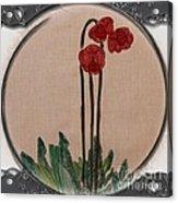 Newfoundland Pitcher Plant - Porthole Vignette Acrylic Print