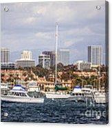 Newport Beach Skyline  Acrylic Print by Paul Velgos