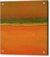 Nfs  Sunset Hues Acrylic Print