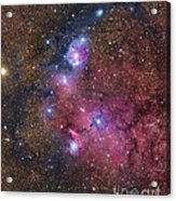 Ngc 6559 Emission And Reflection Acrylic Print